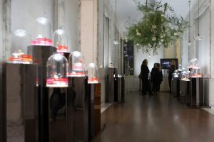 Objects and material, displayed under cloches as in the XIXth century cabinets de curiosité, give rhythm to this guided visit of the SPA and the boutique.