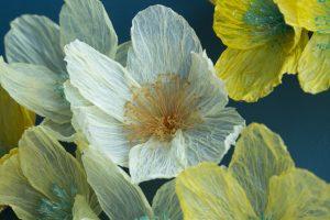 """William Amor's new floral creation """"Clematis Petroliferus""""."""