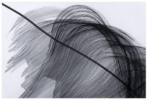 Angèle Guerre, plasticienne, 2019, « Par ailleurs ». Impressions sur plexiglas, vernis miroir, adhésif. Œuvres réalisées dans le cadre de la résidence de création à la Chapelle des Pénitents Blancs de Vence. © Jacques Philippot