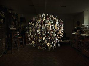 2014 – LES COLLECTIONNEURS : Sculpture et photographie sur le thème de la conchyophilie. Certaines  personnes semblent s'attacher à des objets bien particuliers, le sens utile de celui-ci étant alors dépassé par le côté sentimental, l'attachement.