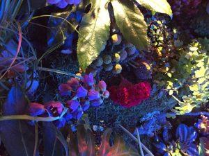 Marianne Guedin, vegetal scenography, September 2016, Macro Gardens for Mazarine, Paris