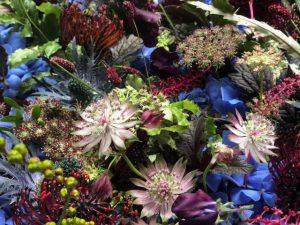 Marianne Guedin, vegetal scenography.