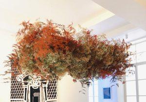 Marianne Guedin, vegetal installation, June 2021. Suspended cloud at the Amélie Maison d'Art Gallery.