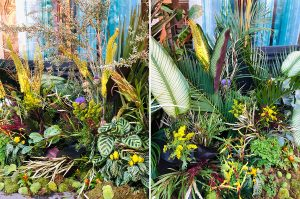Marianne Guedin, vegetal scenography for the Designer's Day, September 2021, vegetal installation before Taï Ping store, Paris.