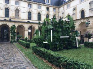 Marianne Guedin, scénographie végétale, juillet 2017, Galia Lahav, Lycée Henri IV, Paris