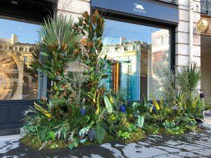 Marianne Guedin, scénographie végétale à l'occasion du Designer's Day, septembre 2021, installation végétale boutique Taï Ping, Paris.