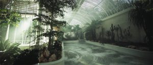 La mosaïque de marbre vert de Mathilde Jonquière et les plantations méditerranéennes de Claire Munier dans le jardin d'hiver du château de Bagnolet à Cognac. (© Hennessy)