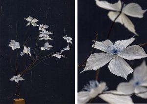 Avril 2019. GUILTLESS PLASTIC – Ro PRIZE – ROSSANA ORLANDI – Milan Design Week. Une fleur de William Amor séléctionnée pour le projet «Guiltlessplastic» de Rossana Orlandi.